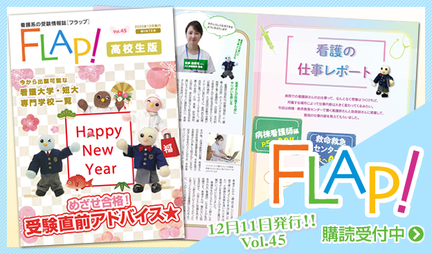 FLAP!vol45 12月11日発行